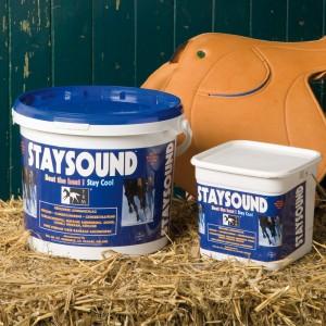 Staysound  Lehmpaste - Pferde Pfelegeprodukt zur Kühlung und Entspannung