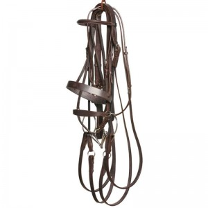 Havana Brown Bridle Set