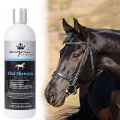 equiXTREME Vital Shampoo